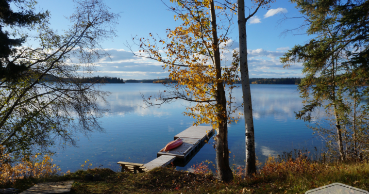 The last days of autumn at the cottage